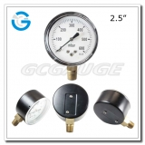 Capsule low pressure gauges 2.5 inch dial with bottom connection